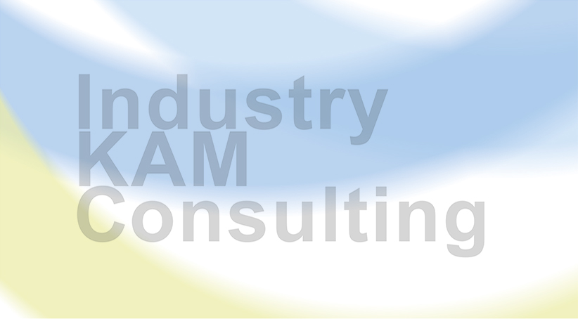 Industry KAM Consulting